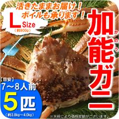 加能ガニ通販人気おすすめランキングkanogani240